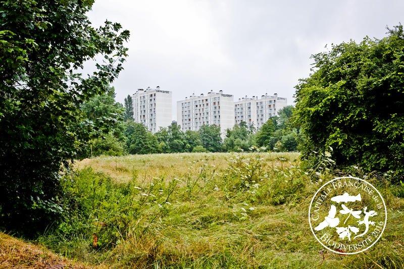 rennes-capitale-biodiversite